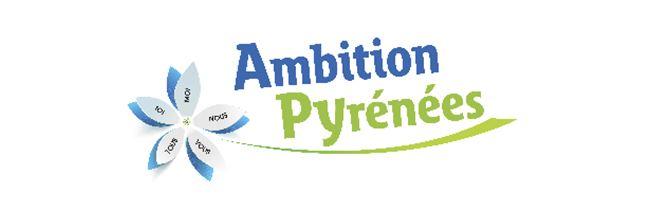 ambition 2